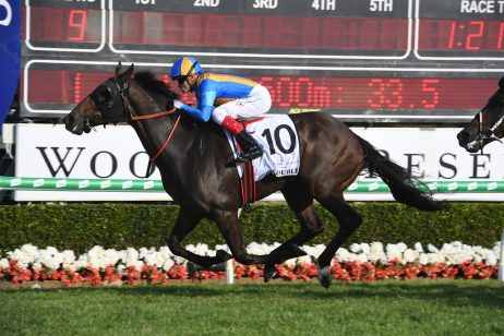 Bjorn Baker Redoubles Up in Magic Millions Cup