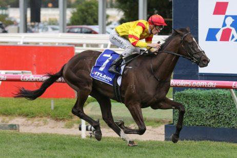 2019 Autumn Stakes: Hawkshot Claims Statement Win Ahead of Australian Guineas