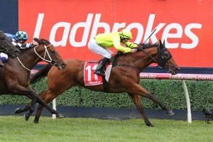 Manuel: ultimate racing photos