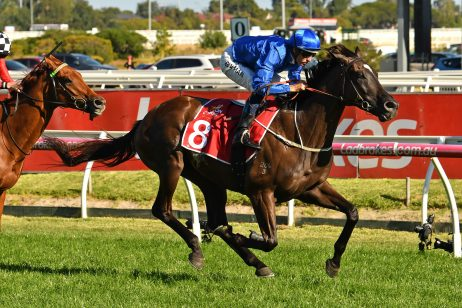Peter Young Stakes: Avilius Impresses En Route to Australian Cup