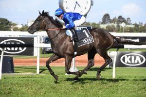 Avilius Horse Form (Photo: Steve Hart)   Races.com.au