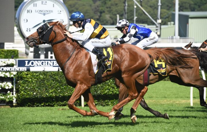 Heart Of Puissance Heads 2021 Warrnambool Cup Field & Betting