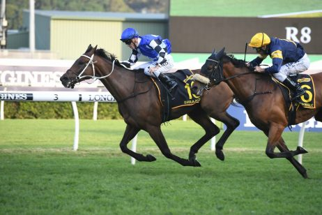 Chris Waller Dominates Early Caulfield Cup Nominations