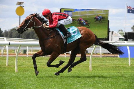 2019 Doomben Cup: Kris Lees Confident Gem Song Can Handle the Trip