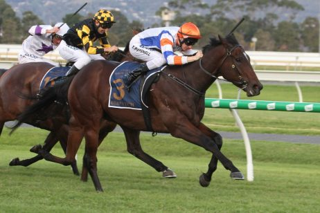 2019 The Goodwood Results: Despatch Wins, Sets Sights on Stradbroke