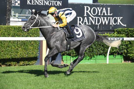 Queensland Derby 2019 Odds Update: Fillies Firm in Betting