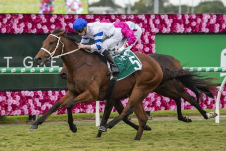 Epsom Fav Te Akau Shark Heads 2019 Tramway Stakes Betting
