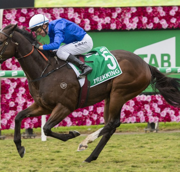 2021 Doomben 10,000 Day: Brisbane Scratchings & Track Report