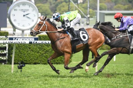 Igraine Tops Tight Grafton Cup 2019 Betting Market