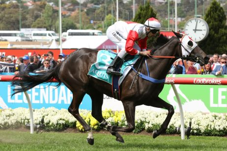 Ladbrokes Cox Plate 2019 First Acceptances: 102 Remain