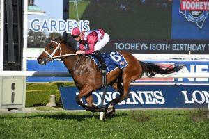 Arcadia Queen Horse Form (Photo: Steve Hart) | Races.com.au