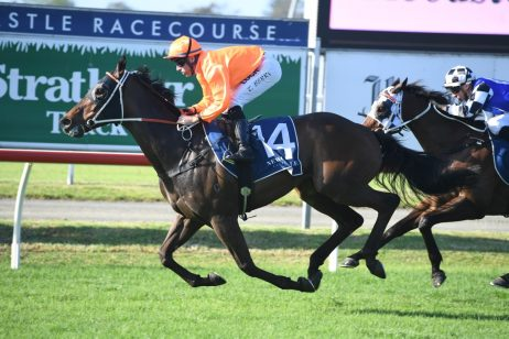 Epsom Handicap 2020 Odds Update: Rock Solid Market Mover