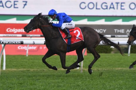 Avilius Leads Australian Cup 2020 Nominations & Betting