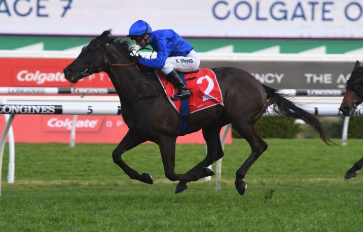 AD Hollindale Stakes 2021 Field & Betting Update: Avilius Firming Favourite