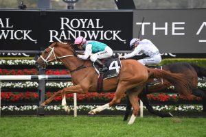 Finche Horse Form (Photo: Steve Hart) | Races.com.au