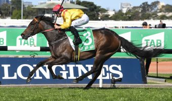 Robert Sangster Stakes 2021 Betting Update: Mizzy The Danger