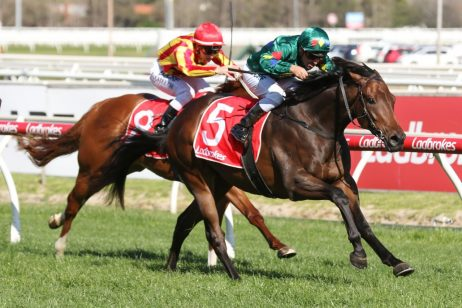 2020 Magic Millions 3YO Guineas Favourite Alligator Blood Wins First-Up