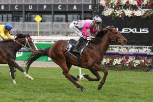 Surprise Baby Horse Form (Photo: Ultimate Racing Photos) | Races.com.au