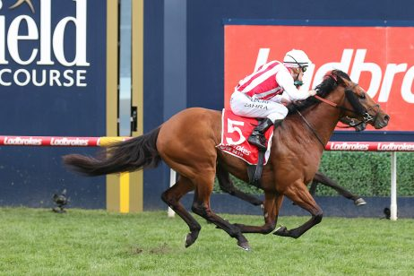 2020 MRC Chairman's Stakes Day: Caulfield Scratchings & Track Report