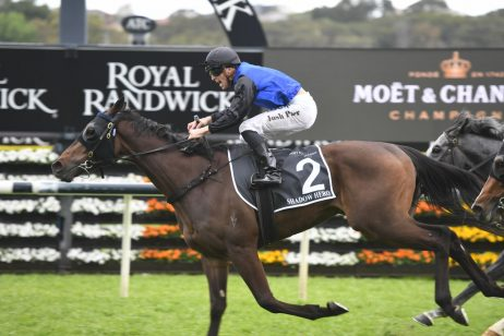 2020 Randwick Guineas Betting Update: Shadow Hero Favourite, Super Seth Out