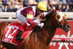 Fierce Impact Horse Form (Photo: Ultimate Racing Photos)   Races.com.au