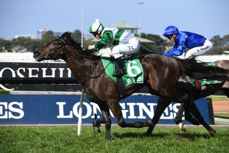 2019 Bondi Stakes Field & Odds: Just Thinkin' Tipped to Win Inaugural Race