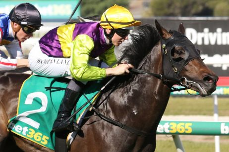 Victoria Derby 2019 Tips: VRC Derby Winner, Each Way & Roughie Picks