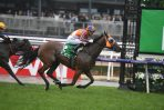 2021 Hollindale Stakes Day: Gold Coast Scratchings & Track Report