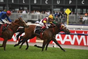 Fierce Impact Horse Form (Photo: Steve Hart)   Races.com.au