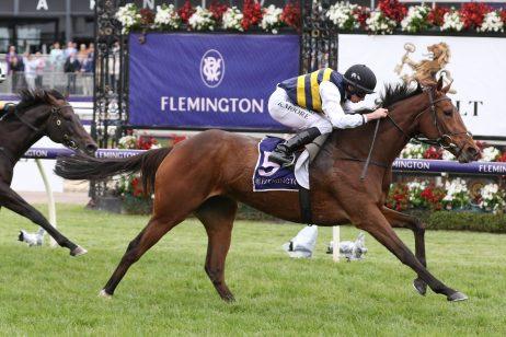 2020 Melbourne Cup Target for Queen Elizabeth Stakes Winner True Self