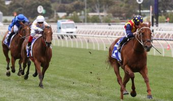 2021 The Everest Betting Update: Nature Strip New Favourite