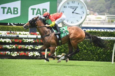 2020 Magic Millions Classic Betting Update: Punters Aim for Favourite