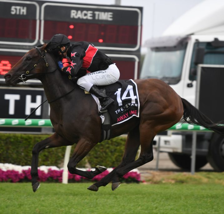 2021 Magic Millions 3YO Guineas Field & Betting: Isotope on Top