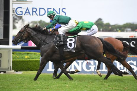 2020 Kensington Stakes Field & Odds: All Too Royal Narrow Favourite