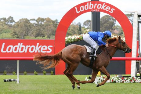 Blue Diamond Favourite Hanseatic Runs in Prelude on CF Orr Day