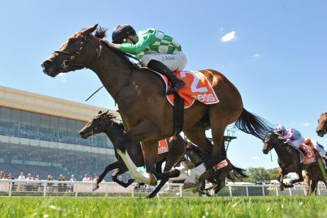 A Beautiful Night Shines in Blue Diamond Fillies Preview