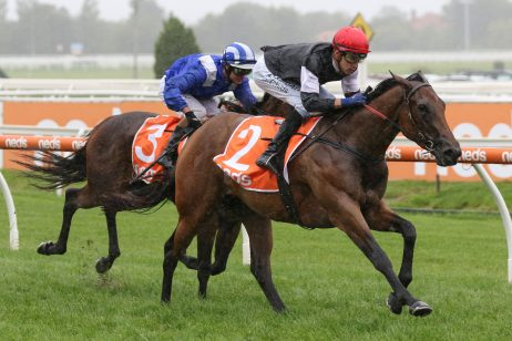 Chairman's Stakes Winner Mildred Firms in Blue Diamond Betting