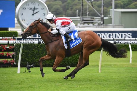 Golden Slipper Odds Firm on Lohnro Plate Winner Supreme Idea