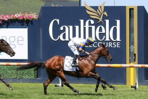 Adelaide Ace. Photo: Ultimate Racing Photos.