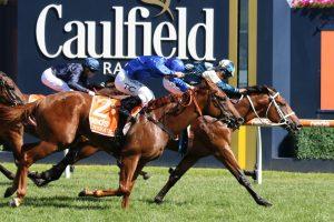Tagaloa Horse Form (Photo: Ultimate Racing Photos) - Races.com.au