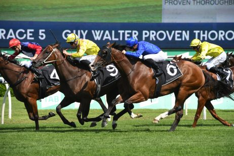 Coolmore Classic on Horizon for Guy Walter Winner Dawn Dawn