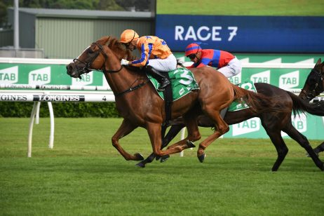 2020 Chipping Norton Stakes Results: Te Akau Shark Circles Late to Win