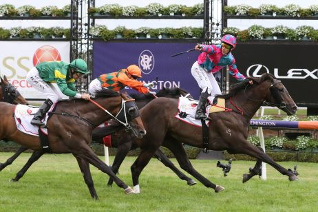2020 VRC Sires' Results: Lunar Fox Wins in an Upset
