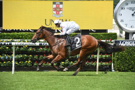 Golden Slipper Odds Firm on Todman Stakes Winner Farnan
