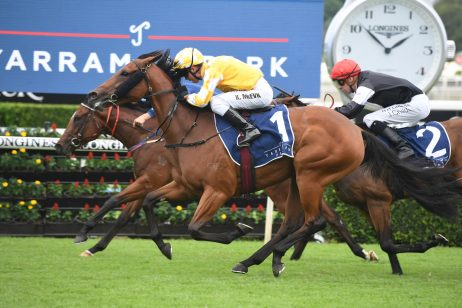 Reisling Stakes Winner Dame Giselle Moves Up Golden Slipper Betting