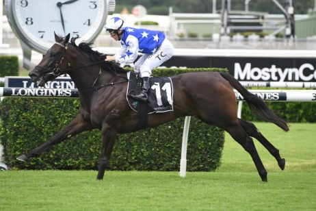 Fireball Stakes Winner Villami Firms in 2020 Arrowfield Sprint Betting