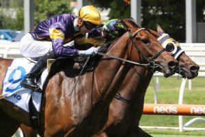 Aktau Horse Form (Photo: Ultimate Racing Photos) | Races.com.au