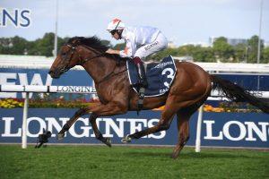 Farnan Horse Form (Photo: Steve Hart)   Races.com.au