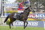 2021 George Main Stakes Day: Randwick Scratchings & Track Report