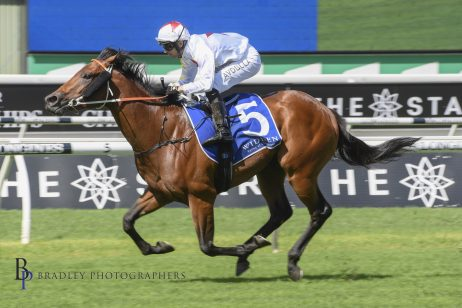 "Danehill Stakes Winner Doubtland Proves the ""Real Deal"" Ahead of Coolmore Stud Stakes"